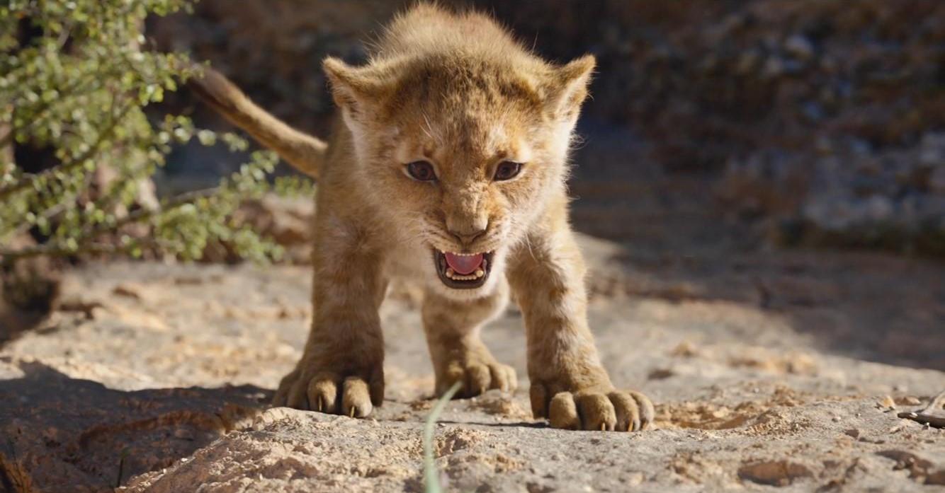 Review The Lion King 2019 Matthew Thornton Film Blog